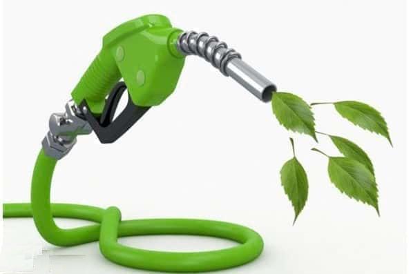 معرفی روش جدید محققان دانشگاه صنعتی امیرکبیر برای تولید سوخت پاک
