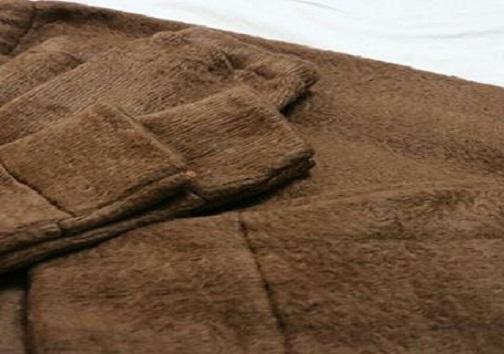 یک شتر و هزار ظرفیت فراموش شده/در خراسان جنوبی شتر را زنده میبرند