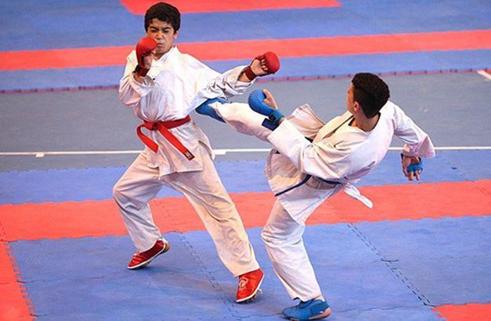 درخشش کاراته کاهای کرمانشاهی در لیگ جهانی