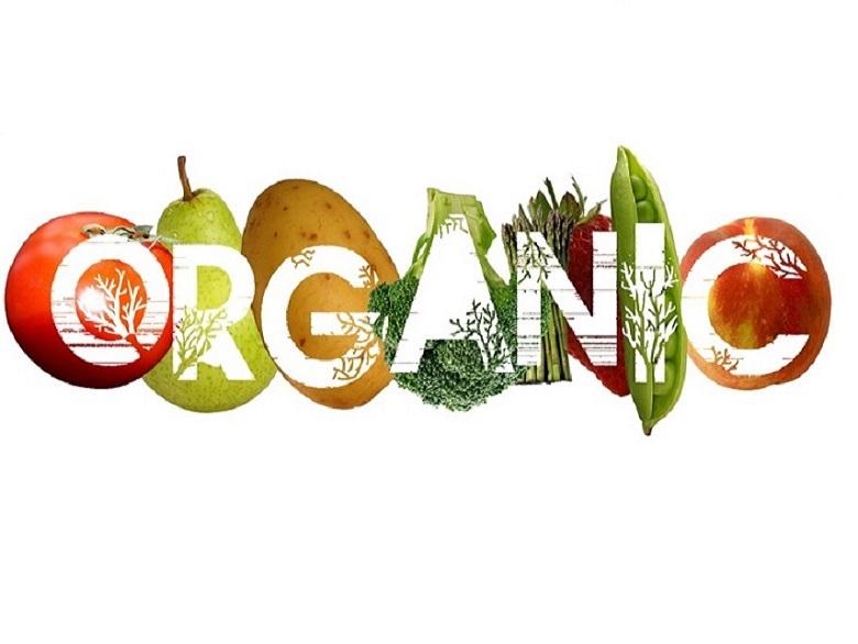 راهکارهای خانگی برای خلاصی از موخوره/ راست و دروغ سلامت غذاهای اورگانیک/ ممنوعیتهای غذایی برای خانمها/ تاثیر چشمگیر صبجانه بر سلامت قلب