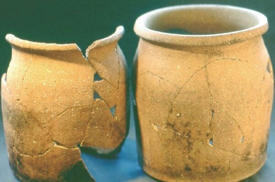 کشف رژیم غذایی مردم قرون وسطی