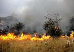 ۲۰هکتار از مزارع گندم کشاورزان مهرانی براثر صاعقه آتش گرفت