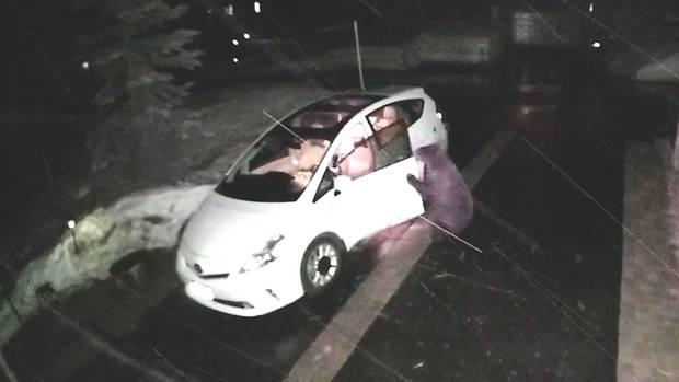 لحظه باز کردن درب خودرو توسط خرس! + فیلم///