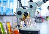 آزمایشگاههای فعال در کشور استاندارد هستند/ افزایش تعرفه گروه آزمایشگاهی منطقی نیست