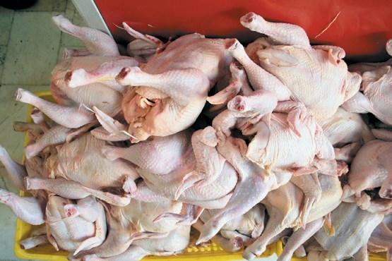 مظنه فروش مرغ تازه در میادین میوه و تره بار