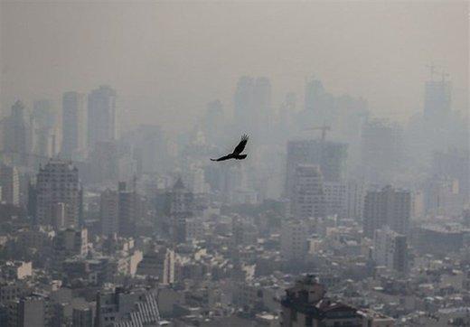 ثبت نخستین روز از هوای ناسالم برای تهران