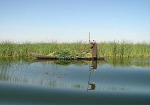 ۴۰ درصد از مساحت تالاب هامون پر شد/ رویکرد محیط زیست کنترل گرد و غبار است