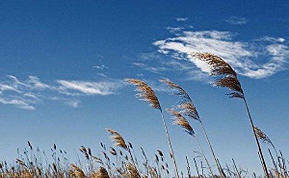کاهش نسبی دمای هوا از فردا در استان قزوین