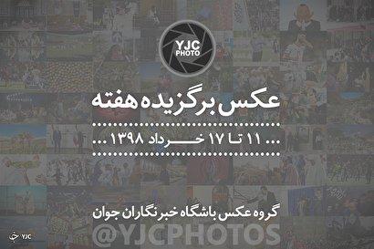 عکس برگزیده هفته/۱۱ تا ۱۷ خرداد ۹۸