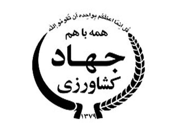 اطلاعیه ممنوعیت انباشت سیب صنعتی در کنار جادههای آذربایجان غربی