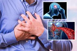 هشدار، این ساعت روز حمله قلبی و سکته سراغتان میآید +بهترین زمان مصرف داروهای فشارخون