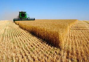 اختصاص ۶۰ میلیارد ریال تسهیلات کم بهره به بخش کشاورزی در آمل