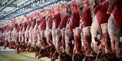برای خرید گوشت از روسیه قرارداد منعقد شود