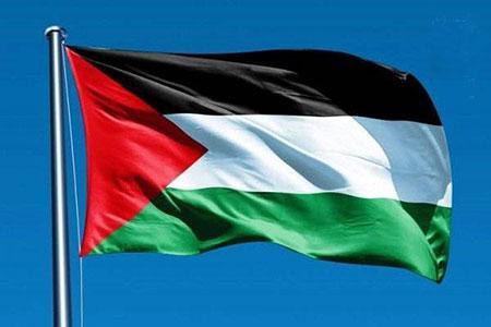 اقدام جالب دانشجویان ایرلندی در حمایت از مردم فلسطین +فیلم