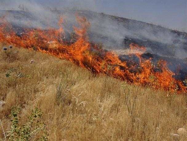 آتش سوزی در ششده و قره بلاغ