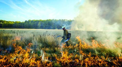 آشنایی با اقدامات ایمنی لازم برای جلوگیری از آتشسوزی در جنگل و دشت