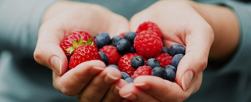 قبل از غذا میوه بخوریم یا بعد از غذا؟