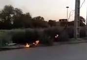 آتشسوزی کابلهای برق در منطقه کوتشیخ + فیلم