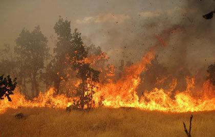 آتش سوزی در گدار مزار کلکوییه ارزوئیه