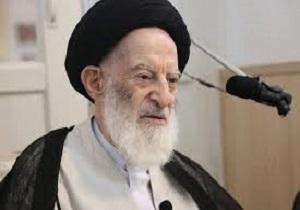 دیدار سرپرست حجاج ایرانی با آیتالله شبیری زنجانی