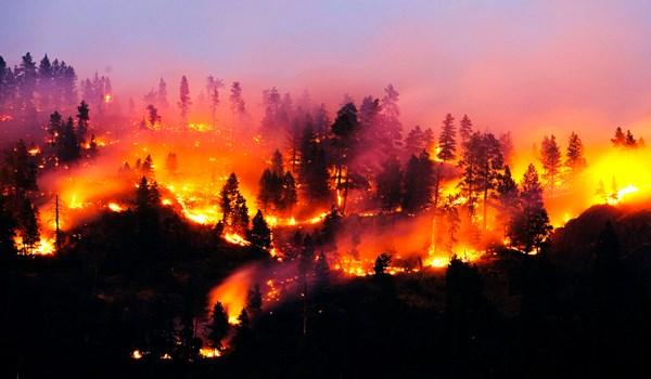 راهکارهایی برای مهار آتش سوزی در طبیعت + اینفوگرافیک