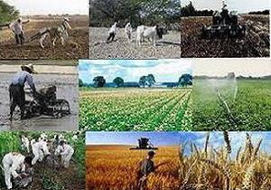 افتتاح ۷ پروژه کشاورزی در فامنین