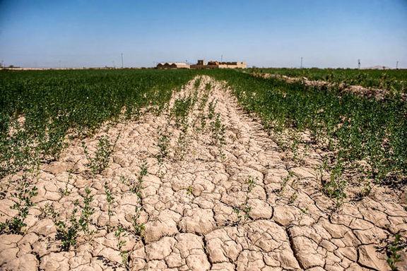 جاده خاکی سوداگران برای دور زدن قانون خاک + صوت
