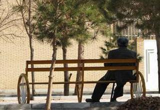 مرد کازرونی در شیراز چیزی از یک رئیس جمهور کم ندارد +تصویر