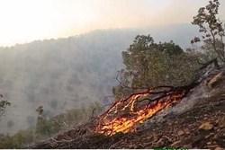 راه اندازی  گشت های سیار در طبیعت خراسان رضوی برای  جلوگیری از آتش سوزی