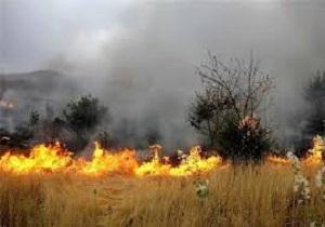 آتش سوزی ۲ هزار و ۵۰۰ متر از مراتع بهار