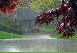 بارشهای رحمت الهی در خراسان رضوی رخ میدهد