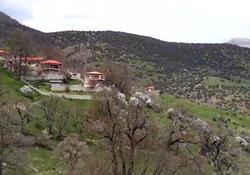 فیلمی از طبیعت جذاب و دیدنی در روستای اوریم