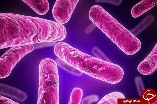 آیا سلولهای بنیادی با سایر سلولها متفاوت هستند؟