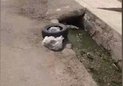 فیلمی از وضعیت نامناسب فاضلاب در منطقه کوتعبدالله