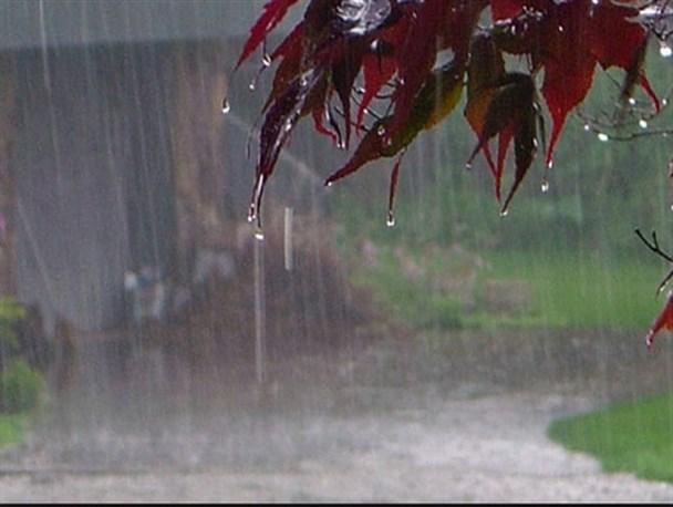 رشد ۹۵ درصدی بارش نسبت به سال قبل/۱۳۳ درصد بیش از یکسال زراعی کامل بارش دریافت کردیم