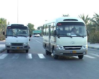 ورود ۱۷ دستگاه مینی بوس به ناوگان حمل و نقل عمومی تا پایان خرداد ماه