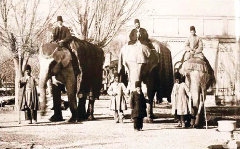 نخستین باغ وحش مدرن ایران کی و چگونه ساخته شد؟