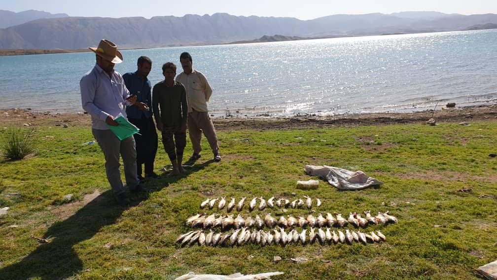 ذخایر آبزیان دریاچه سد سلمان فارسی ارزیابی شد