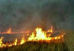 آتش میانکاله هنوز خاموش نشده است