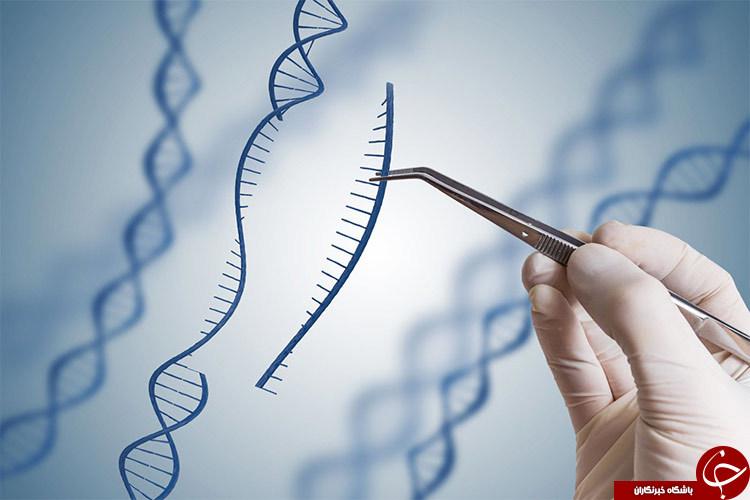 منظور از ژن درمانی چیست؟ +بررسی نحوه عملکرد ژنها