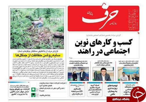 جامعه اسلامی با چاشنی نشاط/ سایه روشن حفاظت از جنگلها