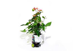 رباتی که هر گیاهی را آفتابگردان میکند + فیلم