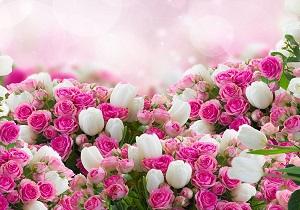 بازار گل در رکود است/ افزایش ۳۰۰ درصدی متعلقات گل در بازار