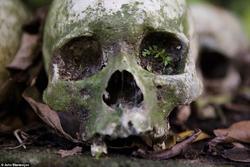 قبرستانی که مردگان آن دفن نمیشوند + تصاویر (۱۲+)