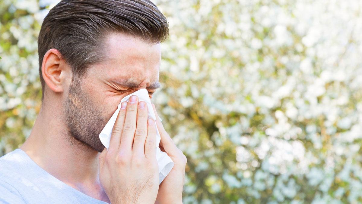 آلرژی فصلی را با ۱۰ فرمول خانگی در نطفه خفه کنید +لیست خوراکیهای ضد آلرژی