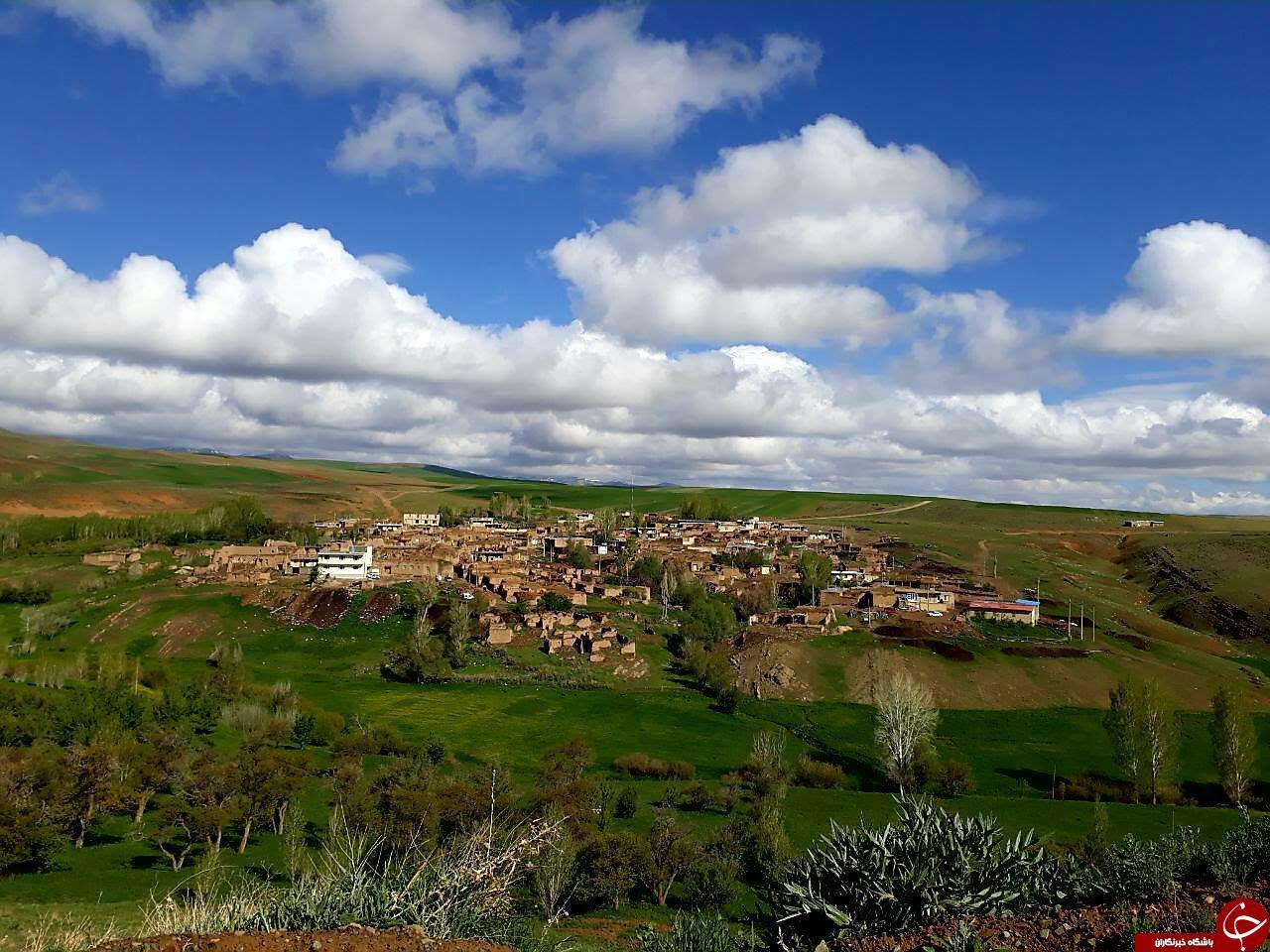 عکسی از طبیعت بهاری در روستای شهرک