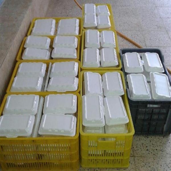 توزیع ۵۰۰ پرس غذای گرم بین نیازمندان میناب