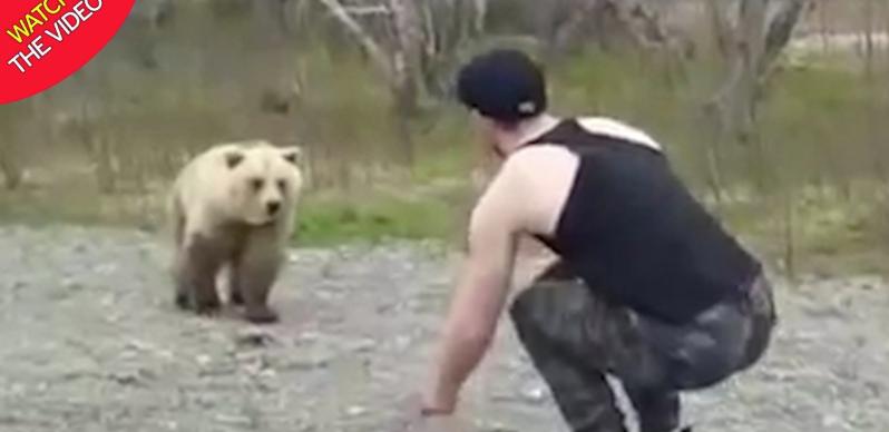 لحظه وحشتناک حمله غافلگیرانه خرس به توریست! + فیلم///