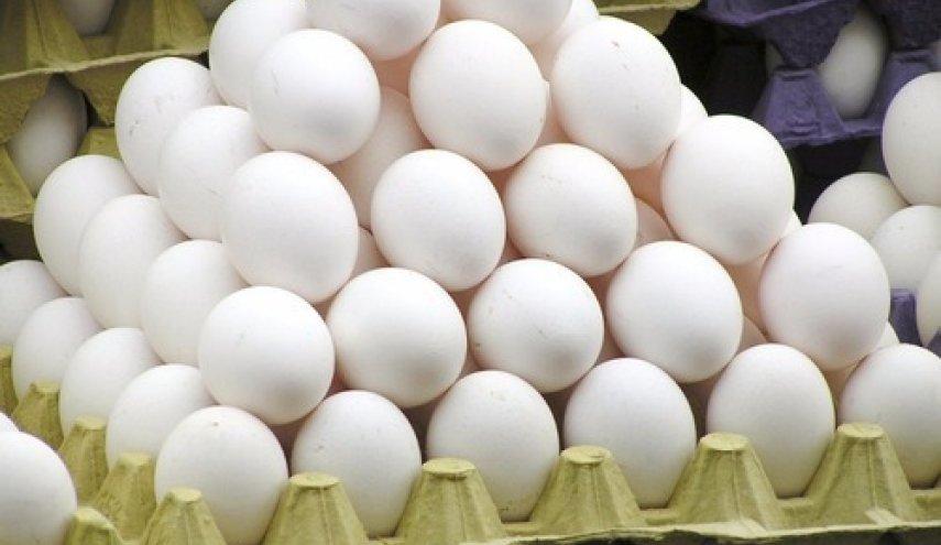 افزایش نسبی قیمت تخم مرغ در بازار/ جمع آوری ۴۰۰ تن تخم مرغ مازاد از سطح بازار