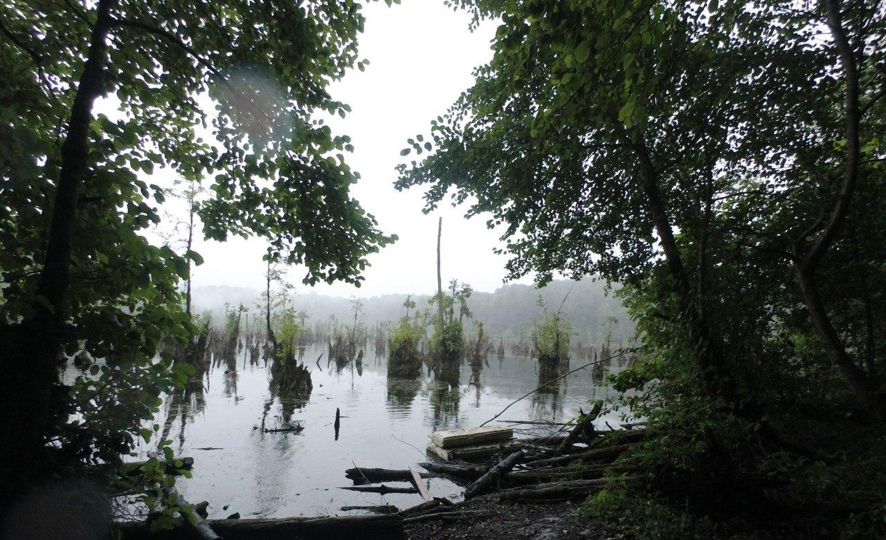 جرات نزدیک شدن به دریاچه ارواح دارید؟ / اگر پاسختان مثبت است این چیزها در انتظار شماست! + تصاویر